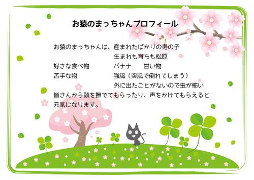 ブログサイズ  お猿のまっちゃんプロフィール.jpg