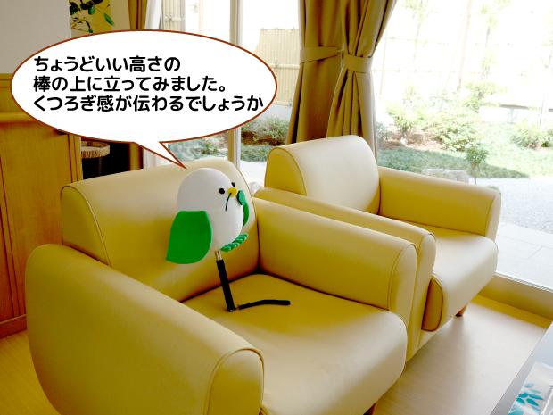 ケアホーム藤井寺カフェ訪問2