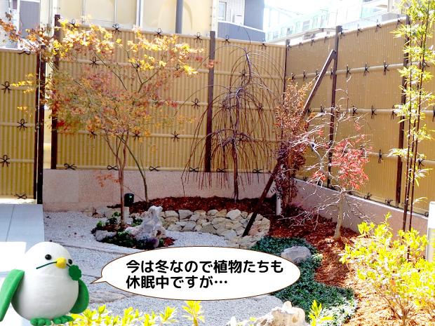 ケアホーム俊徳道探索リポート3-4